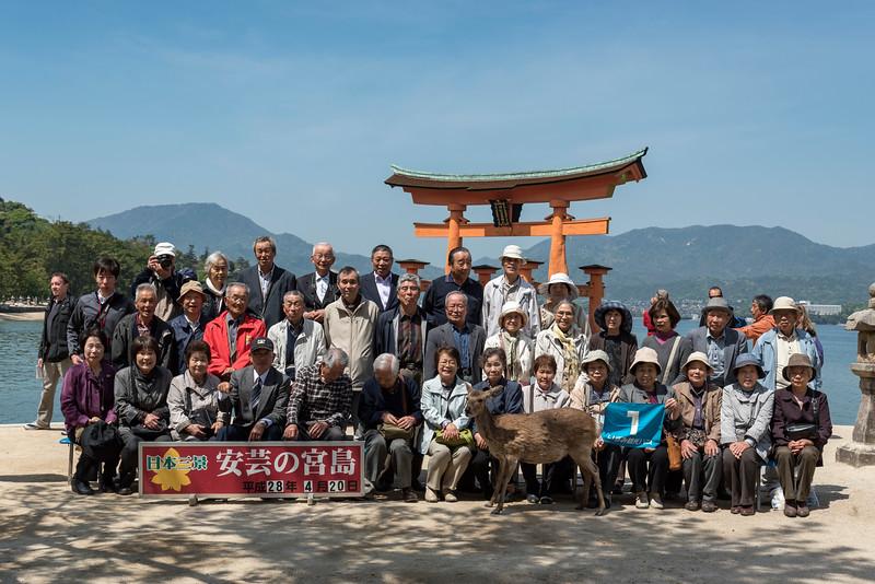 Tourist photo, Miyajima
