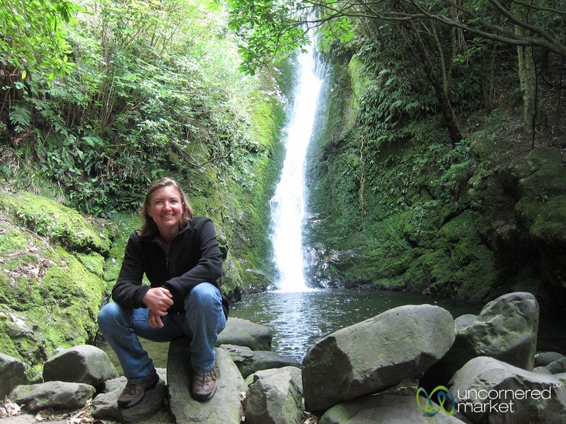 Ohau Waterfall Near Kaikoura, New Zealand