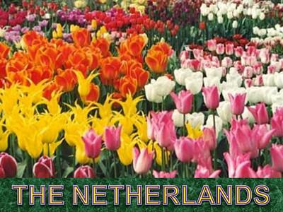 Netherlands Images