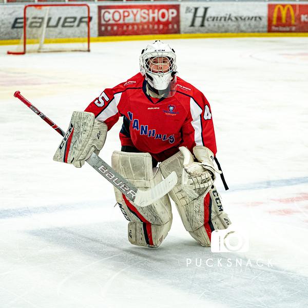 Göteborg Ishockey cup: Hanhals Kings vs Linköping HC 200102