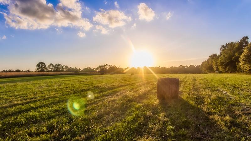 Hayfield Sunset
