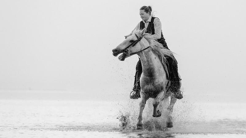 Guardian Riding Camarague White Horse