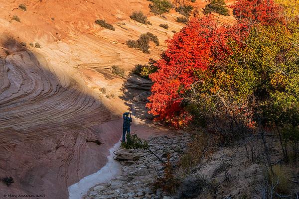 Cedar Breaks, Bryce, Zion 10/10/19