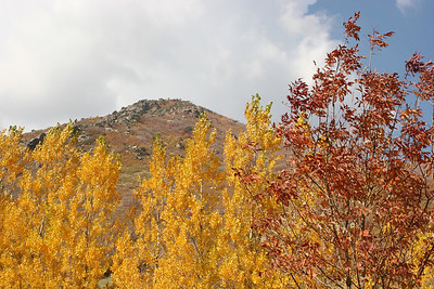 The drive to Snowbasin on a UT fall day