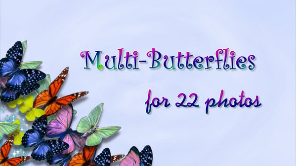 Multi Butterflies for 22 photos