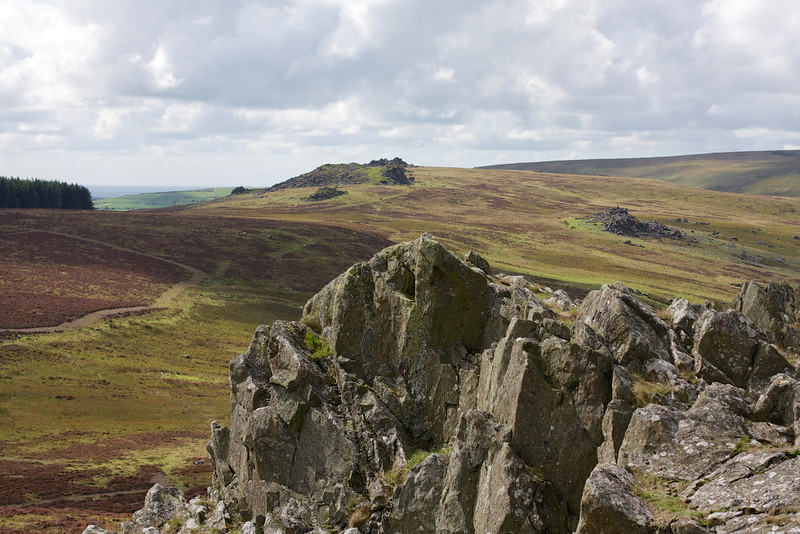 From Foel Drygarn towards Carn Menyn