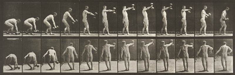Nude man lifting a 50-lb dumbbell at arm's length (Animal Locomotion, 1887, plate 326)