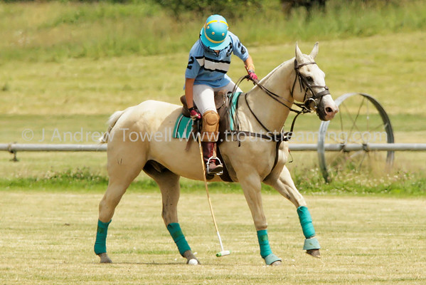 2014 Tacoma Polo Club Independence Cup