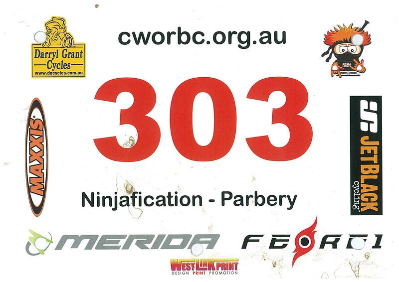Ginga Ninja 250 2012 - 303.jpg