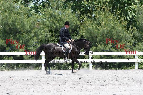 Miscellaneous Horse Photos