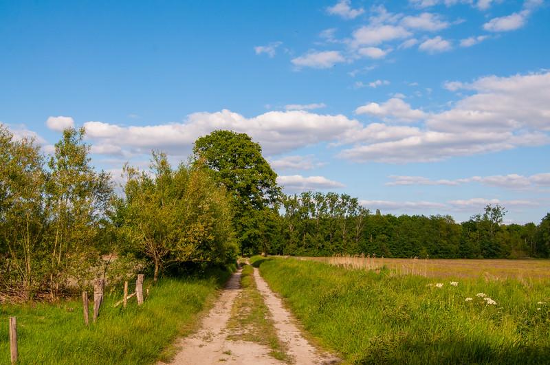 GrensPark Kempen~Broek, omgeving Stramprooierbroek & St.-Maartensheide 84.jpg