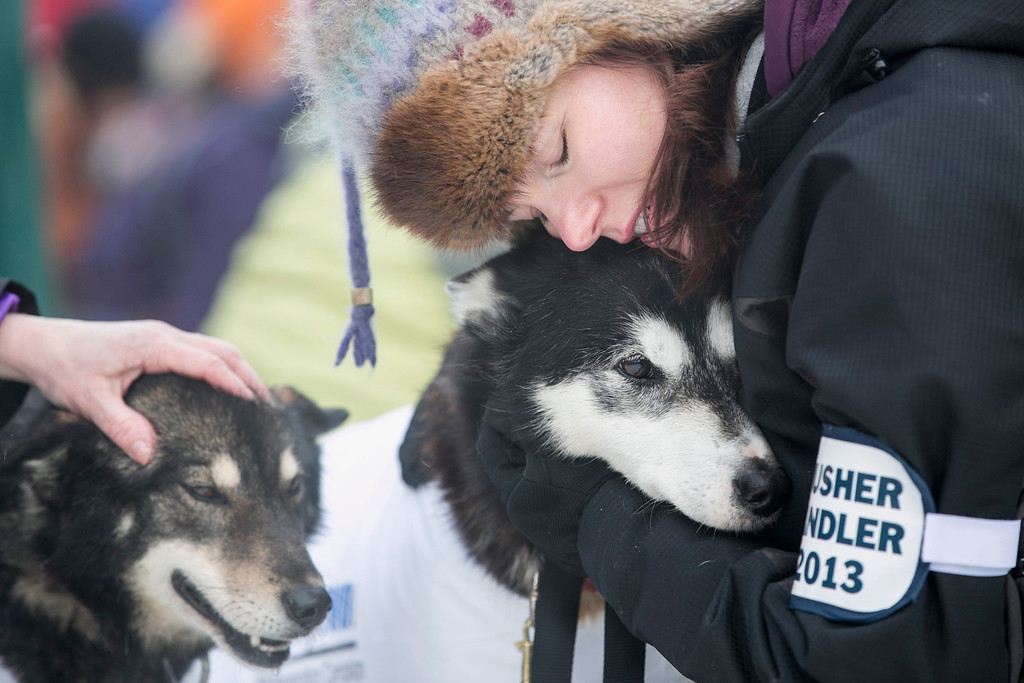 . A musher handler for Ed Stielstra\'s team hugs one of the dogs before lining up for the ceremonial start to the Iditarod dog sled race in downtown Anchorage, Alaska March 2, 2013.  REUTERS/Nathaniel Wilder