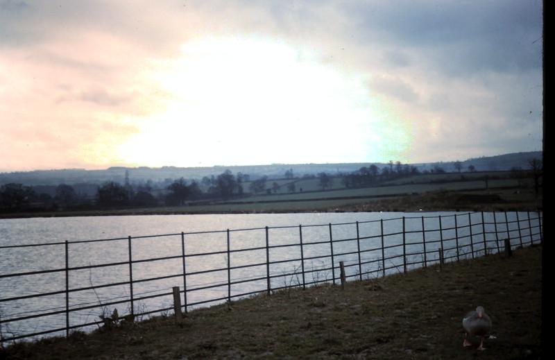 1959-3-15 Lake @ Harptree, Wiltshire.JPG