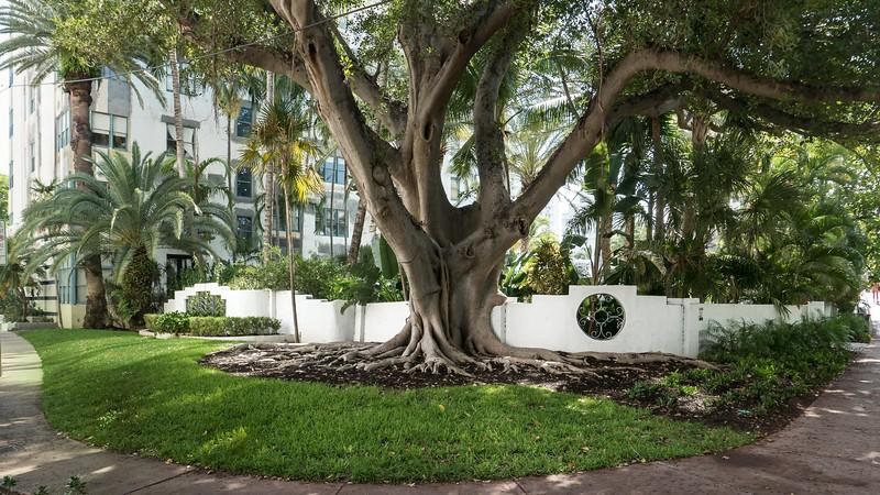 V3976 Miami Beach.jpg