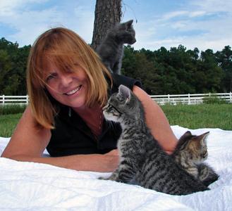 FWF Kittens, September '08