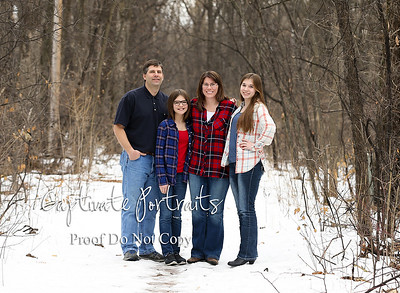 Schluchter family (proofs)