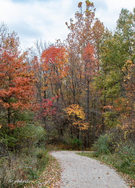 Indian Hollow color 102420-4.jpg