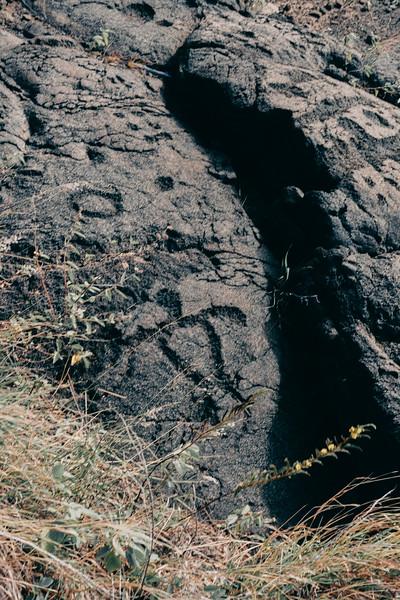 Hawaii20-298.jpg