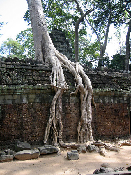 Burma 2003-40.jpg