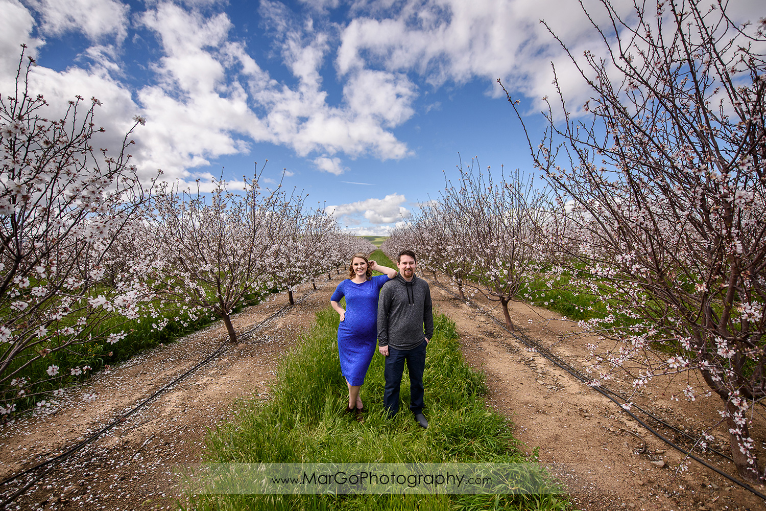 wide angle of pregnant couple in the orchard, Tracy maternity session