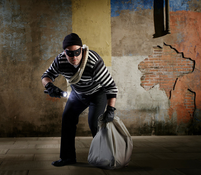 robber sml.jpg