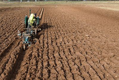 2020-03 Wigton Ploughing Match
