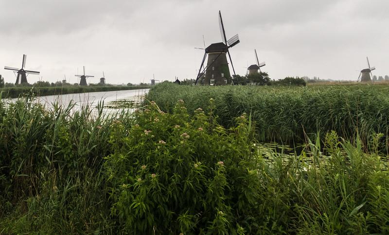 Kinderdijk Netherlands Windmills June 30, 2017  008.jpg