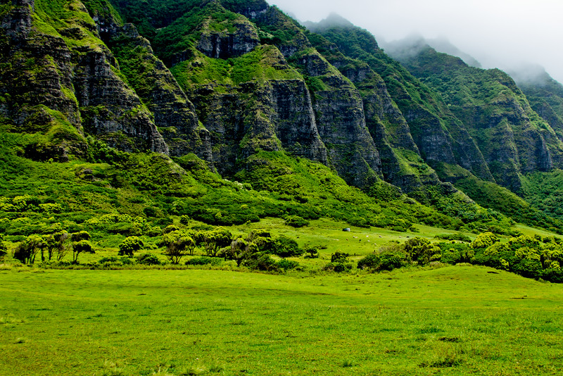 Journey into Oahu Photograph 82