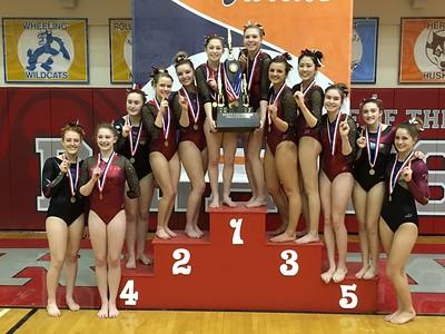 PR Gymnastics Co-Op Wins Third State Championship
