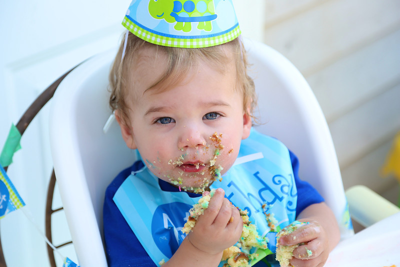 Max's First Birthday - Cake