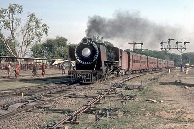 Indian Steam