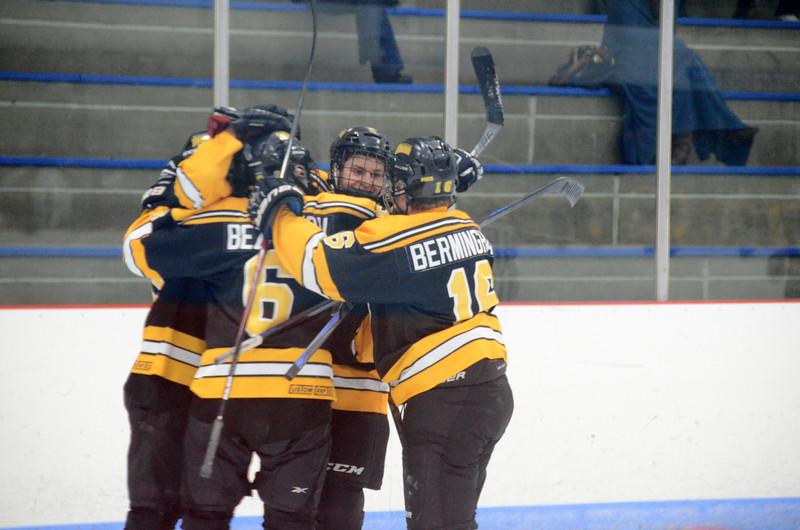 141005 Jr. Bruins vs. Springfield Rifles-075.JPG