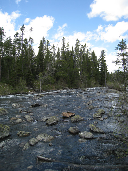 This is the narrow outlet where water flows from Leigh Lake to String Lake