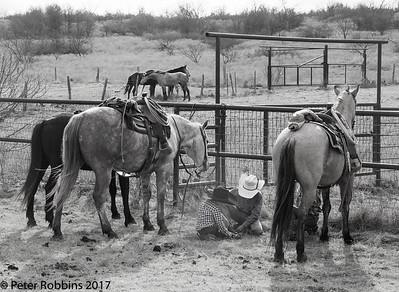 Tecumseh Ranch 2017