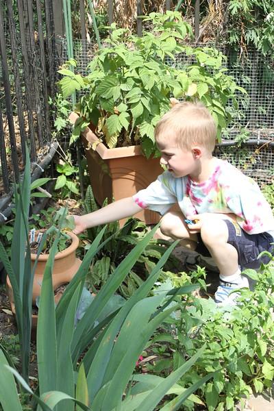 Preschool Picnic (Gabe) Playground