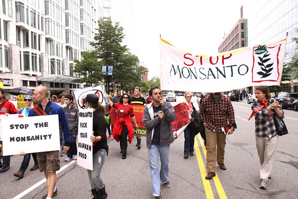 Second March Against Monsanto Oct. 12, 2013