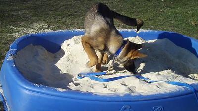 2010.3 Jake and the sandbox
