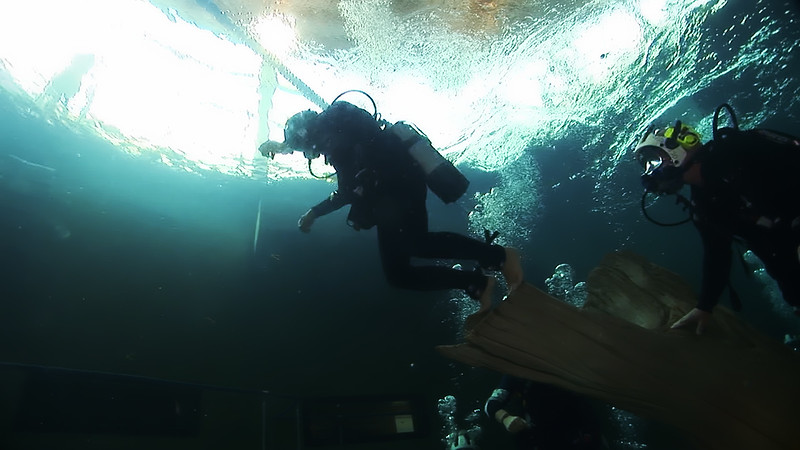 Underwater Walk Edit 45secs.00_00_22_21.Still029.jpg