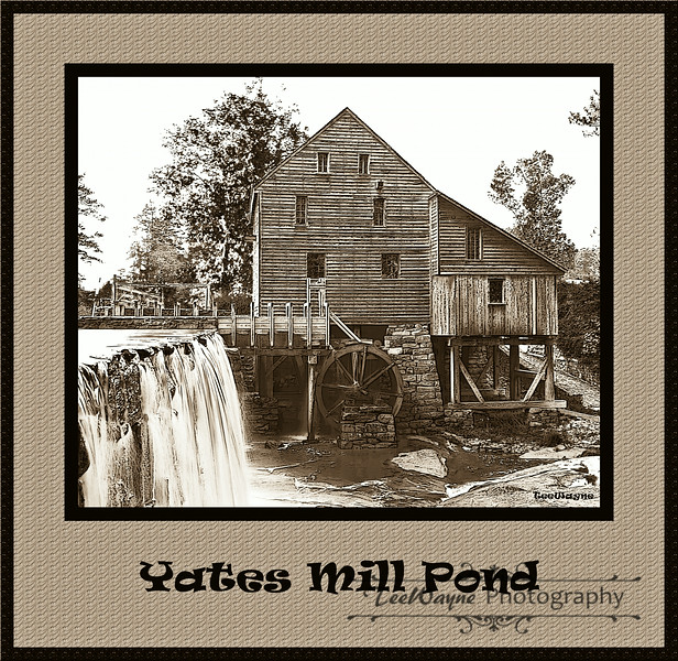 Yates Mill Pond
