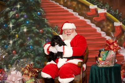 Photos with Santa at HealthEPets Market 155 Toney Penna Dr. Jupiter, FL 561-748-PAWS (7297)