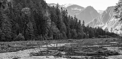 Carbon_River_20210625