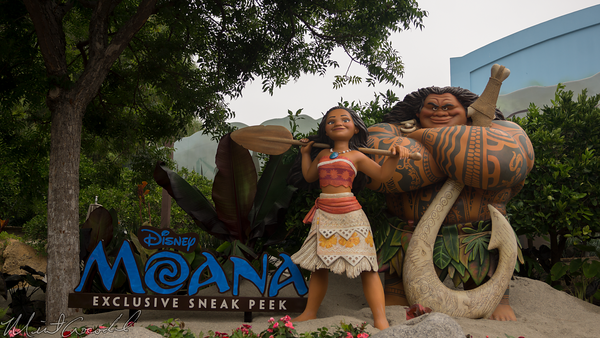 Disneyland Resort, Disney California Adventure, a bug's land, Bugs, Land, Moana, Sneak, Peek