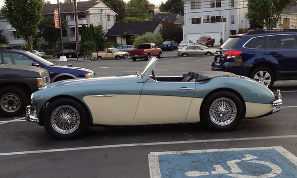 The Healey