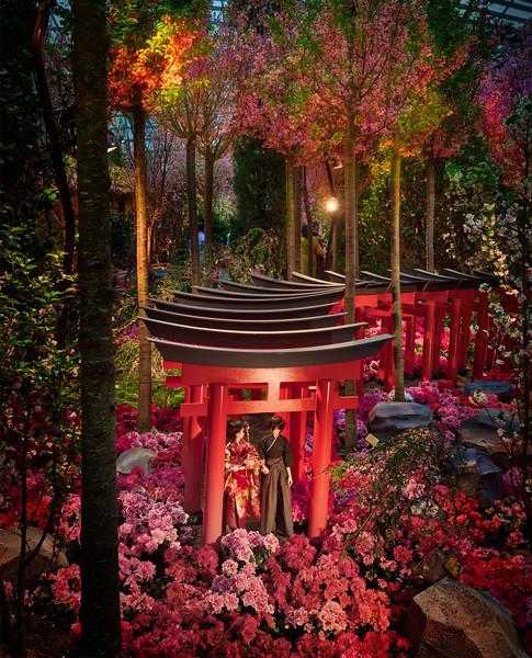 A Miniature Kyoto