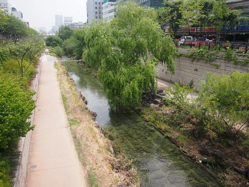 P6283890-cheonggyecheon-stream.JPG