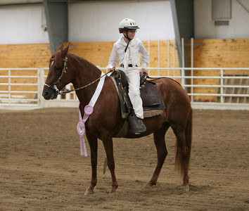 Classes 37 through 50, Best Bozal, Best Gaited, Ch.&Res., Ch. of Ch. and Awards