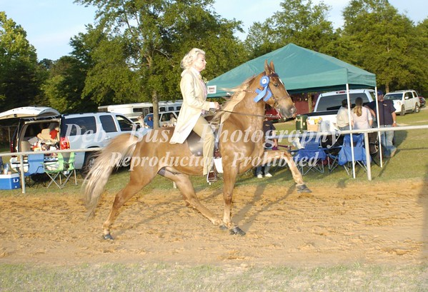 CLASS 26  PARK PLEASURE AMATEUR OWNED & TRAINED SPECIALTY