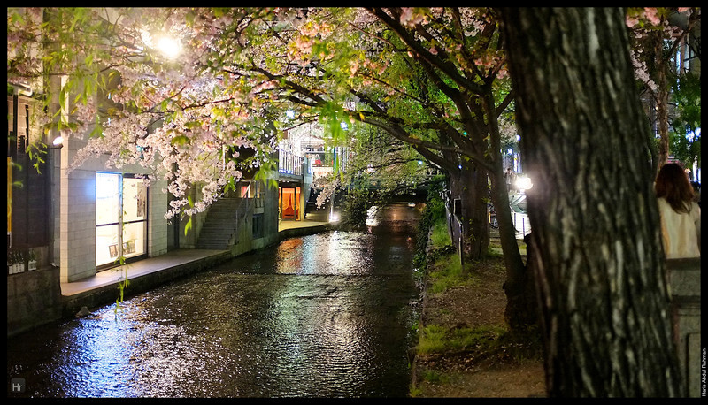 Walking by Gion 4th April 2013 Kyoto