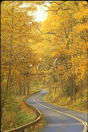 NORTH CAROLINA - BLUE RIDGE PARKWAY - BIKING / ROAD