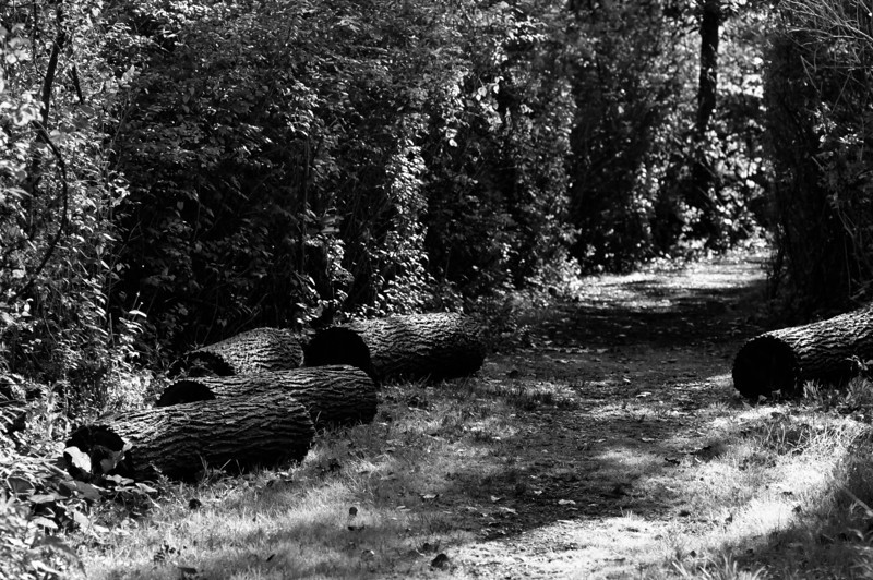 20100908_big_creek_reservation_007.jpg